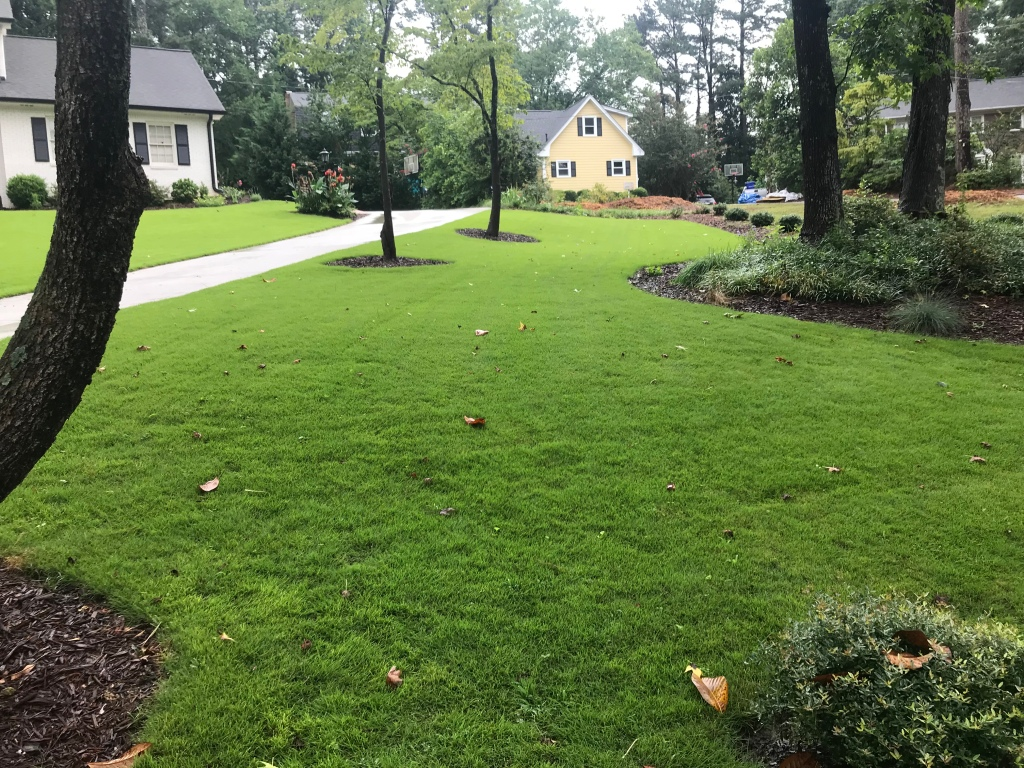 Sod Installation Before After Pictures Curb Appeal